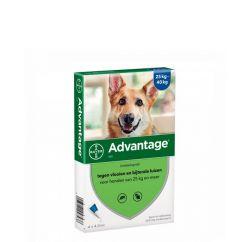 Advantage Cão 25-40kg Pipetas 4mlx4