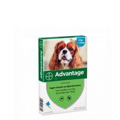 Advantage Cão 4-10kg Pipetas 1mlx4