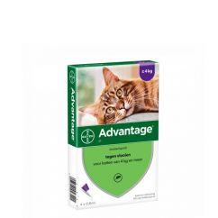 Advantage Gato 4-8kg Pipetas 0,8mlx4